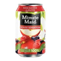 Minute Maid Fruits Rouges 33cl (pack de 24)