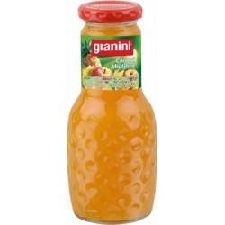 Granini Multifruits 25cl (pack de 12)