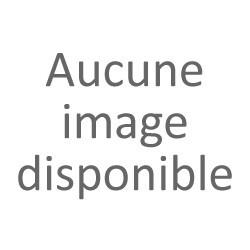 Finley Citron Fleur de Sureau 25cl (pack de 6)